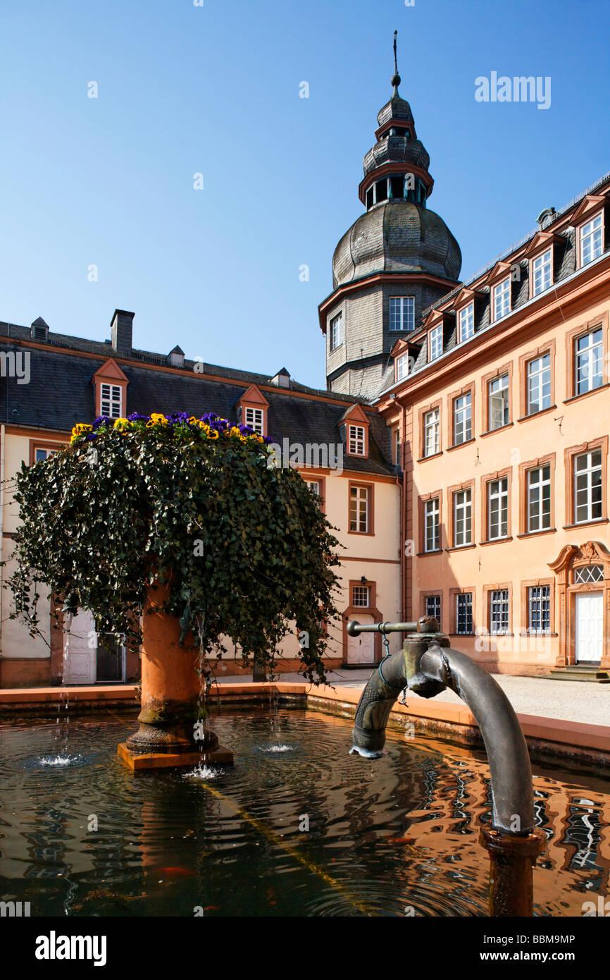 Fountain with ivy and Berleburg Castle, Bad Berleburg, district of Siegen-Wittgenstein, Rothaarsteig, North Rhine - Stock Image