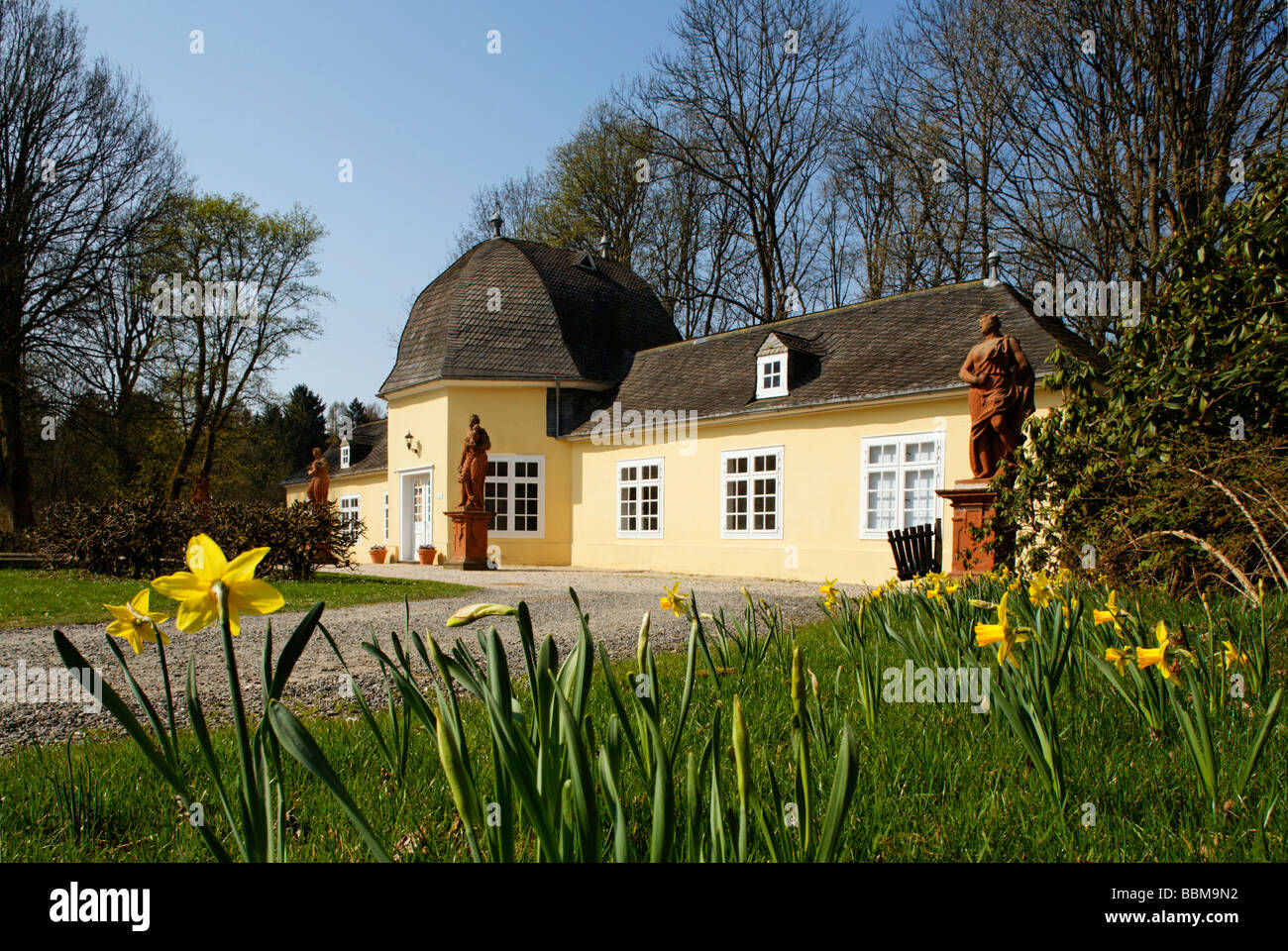 Orangery, civil registry, palace garden, statues, daffodils (Narcissus sp.), Berleburg Castle, Bad Berleburg, district - Stock Image