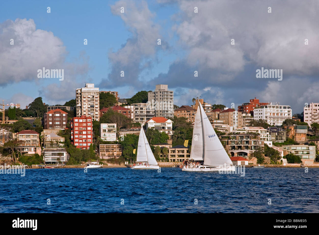 Australia New South Wales. Sailing in the late afternoon off Double Bay in Sydney harbour. - Stock Image