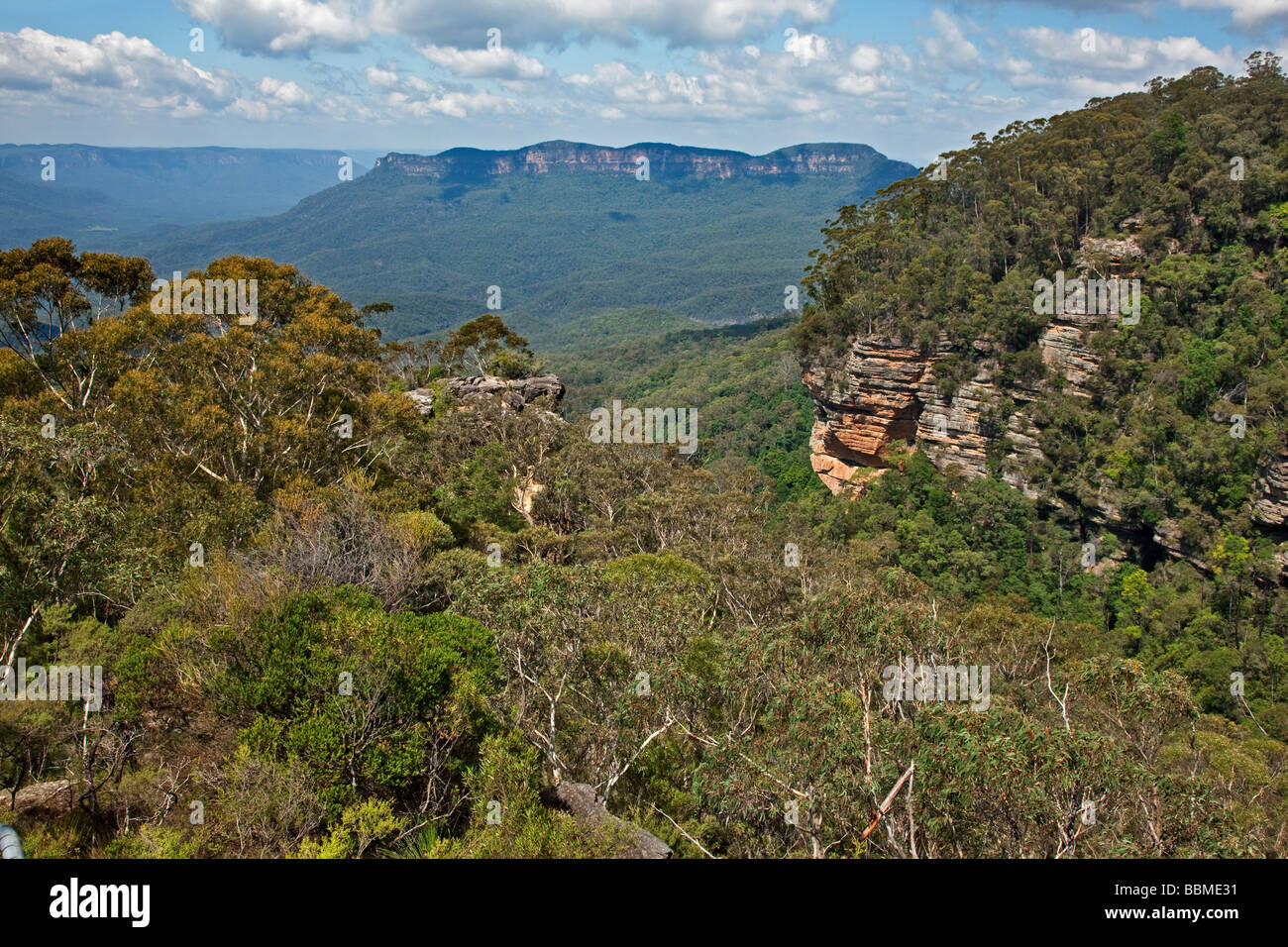 Australia, New South Wales. A view of the Jamison Valley in the Blue Mountains from Prince Henry Cliff Walk. Stock Photo