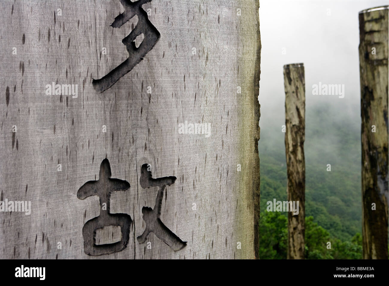 China, Hong Kong, Lantua Island. The Wisdom trail. The outdoor wooden version of the 260-word prayer is on 38 wooden - Stock Image