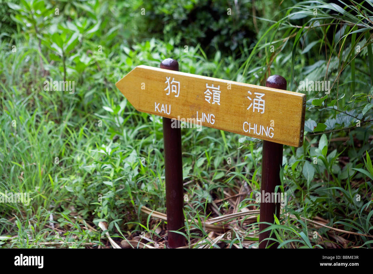 China, Hong Kong, Lantau Island. Walking and trekking on the Lantau Trail, the footpaths are very well made and - Stock Image
