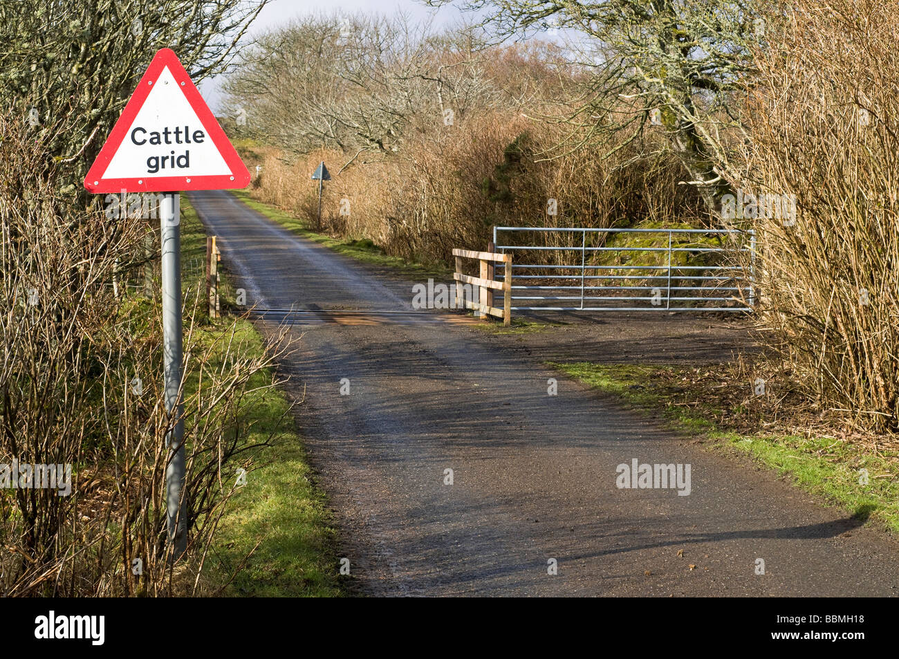 dh  CATTLE UK Scotland Country road Caithness cattle grid gate and signpost - Stock Image