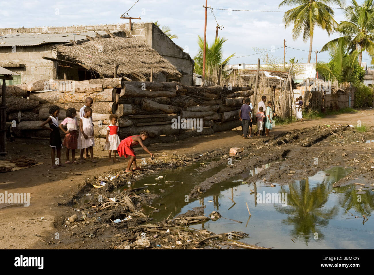 Malaria mosquitoes find suitable breeding grounds in water filled potholes Quelimane Mozambique - Stock Image