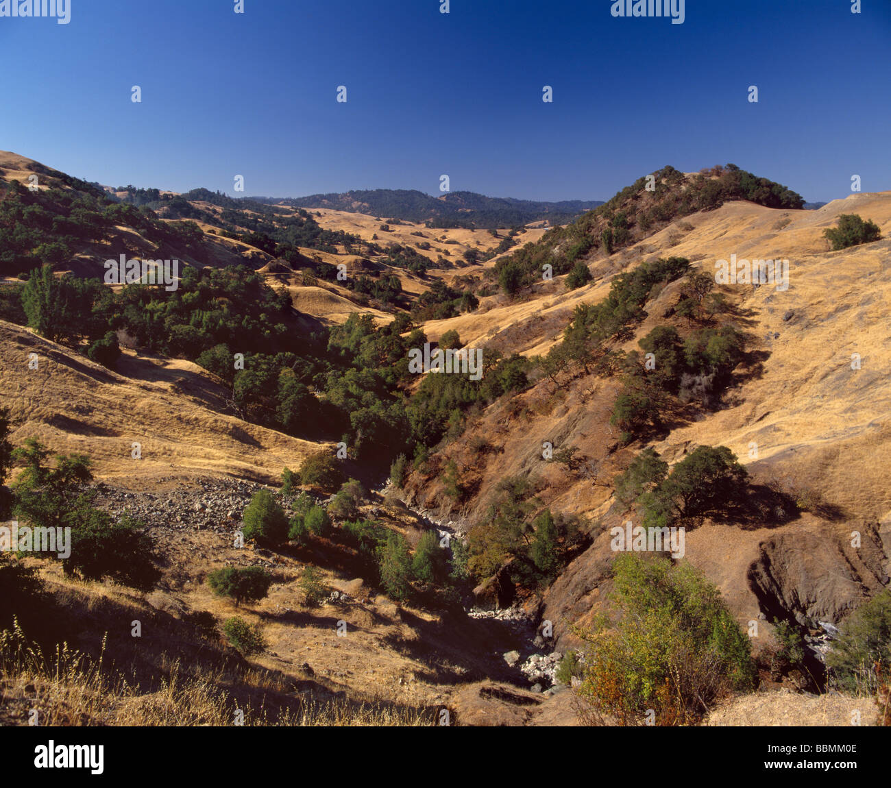 Head of the Anderson Valley Mendocino Co California - Stock Image