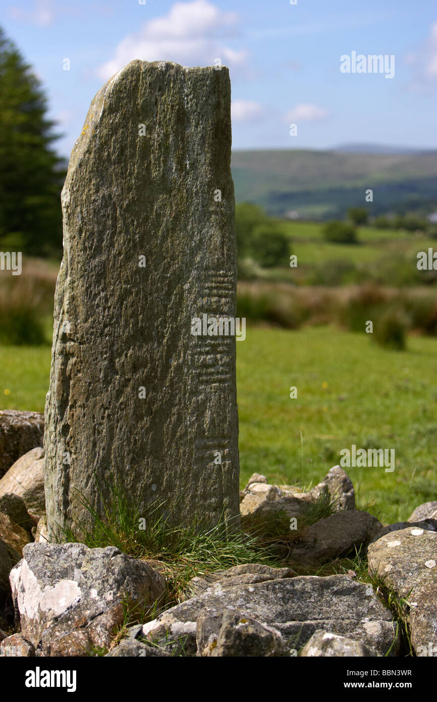 Aghascrebagh Ogham Stone county tyrone northern ireland uk this is the only example of an ogham stone in county - Stock Image
