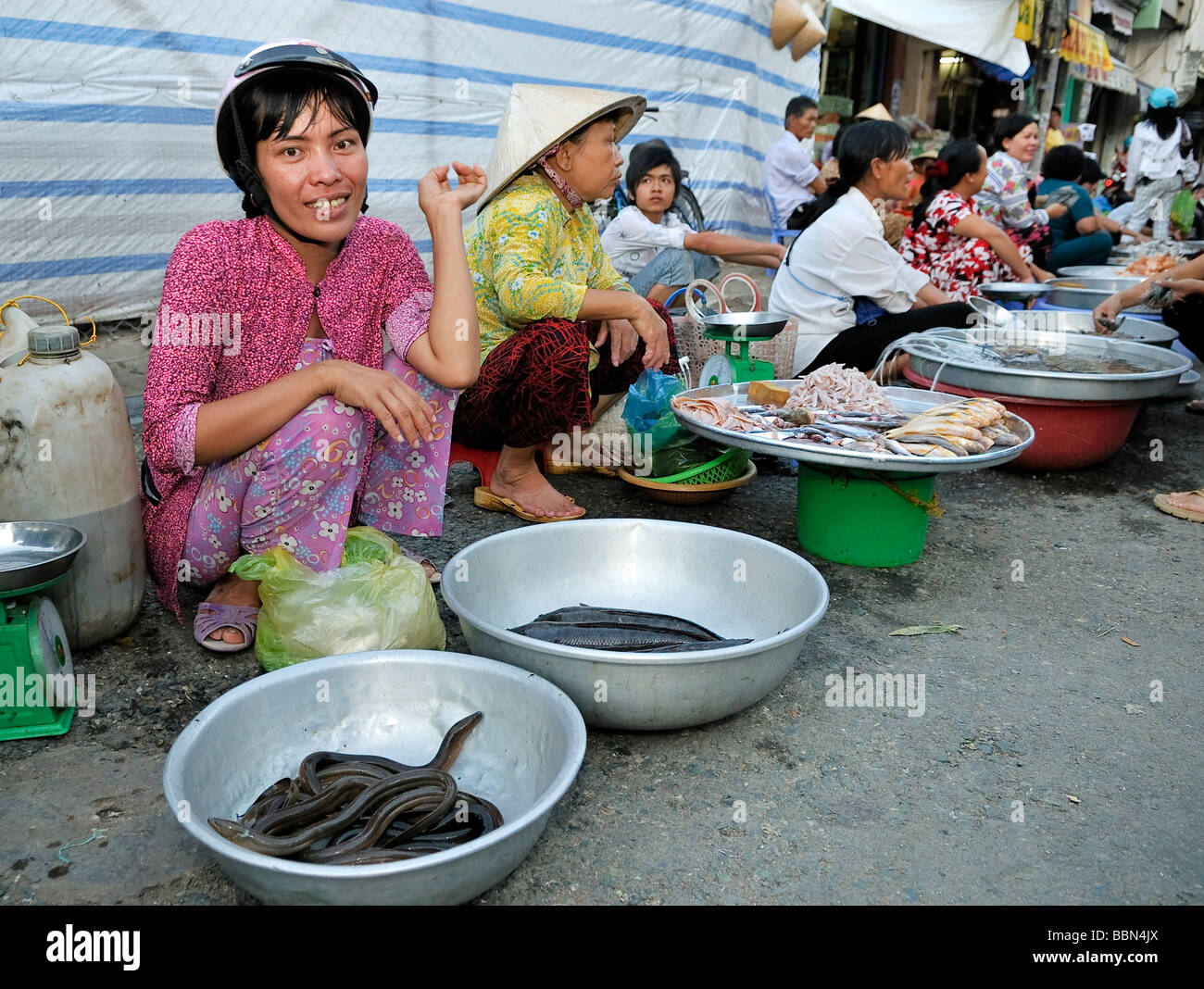 Women selling their goods, live eels, squid, dried fish, fish market, Mekong Delta, Vietnam, Asia - Stock Image
