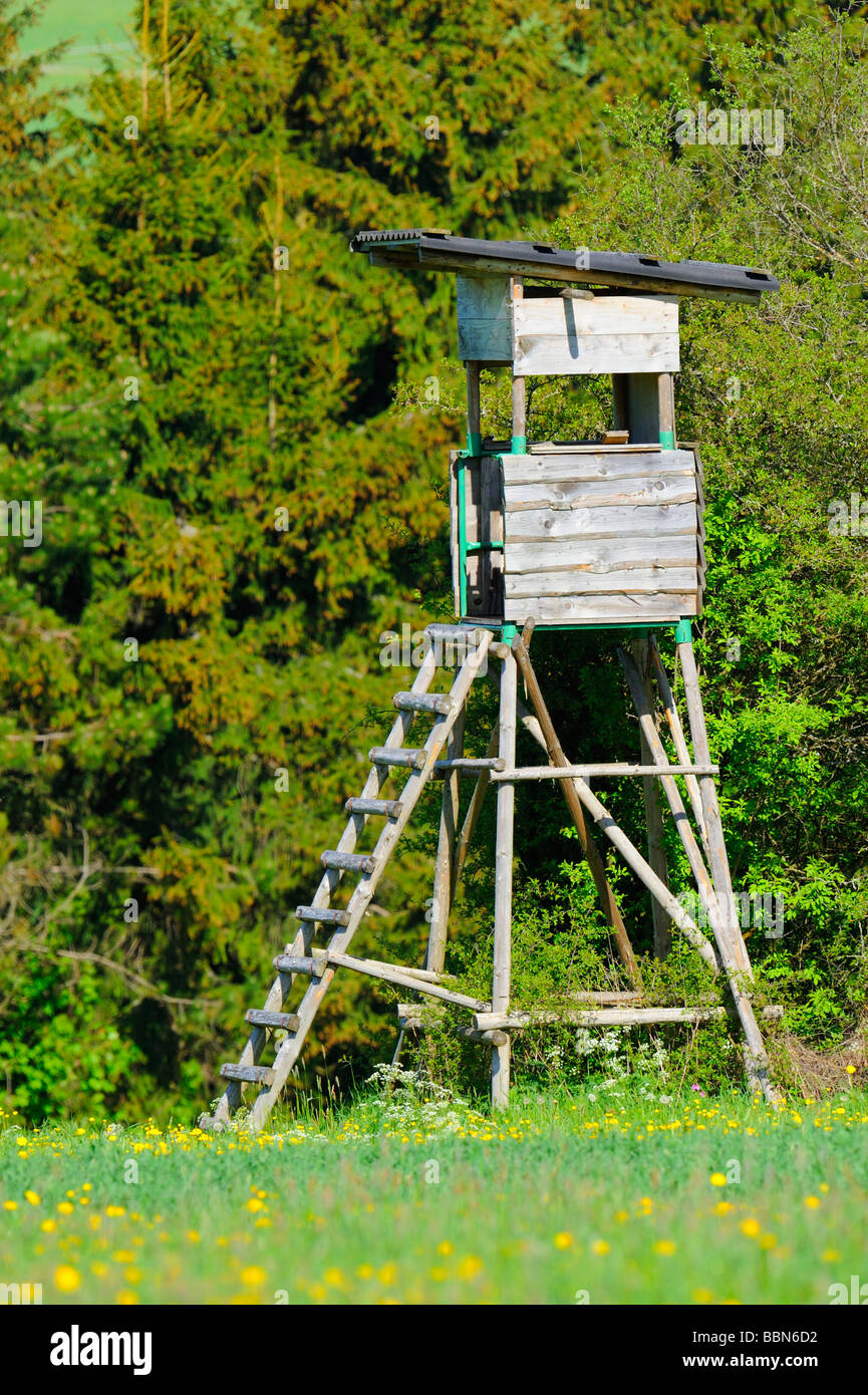 Hunting stand, raised hide at the edge of the forest - Stock Image
