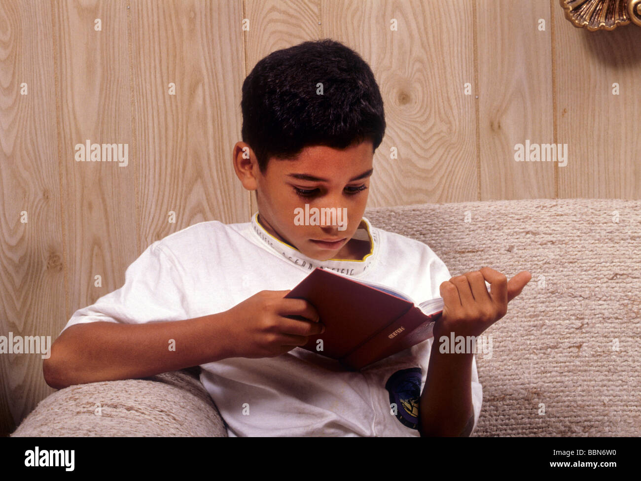 Hispanic Latin Boy Read Book Engross Concentrate Attention Deep Serious    Stock Image