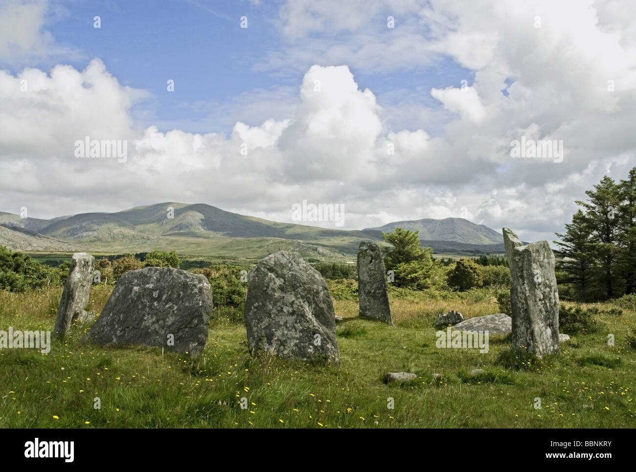 geography / travel, Ireland, Derringart West, Derreenataggart Stone Circle, Additional-Rights-Clearance-Info-Not - Stock Image