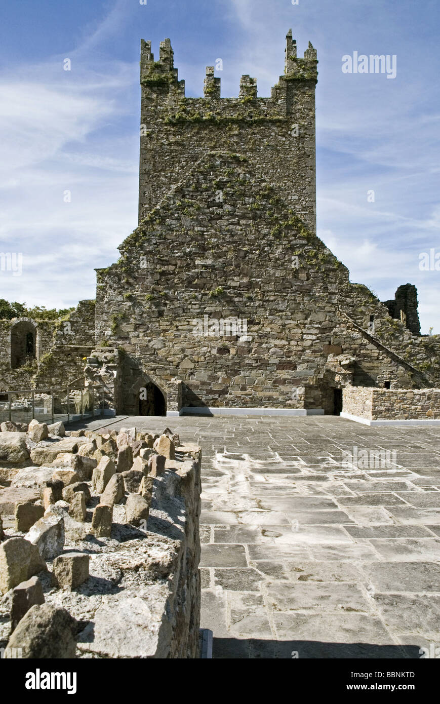 geography / travel, Ireland, Thomastown, churches / monasteries, Jerpoint Abbey, founded: 1158, ruin, , Additional - Stock Image