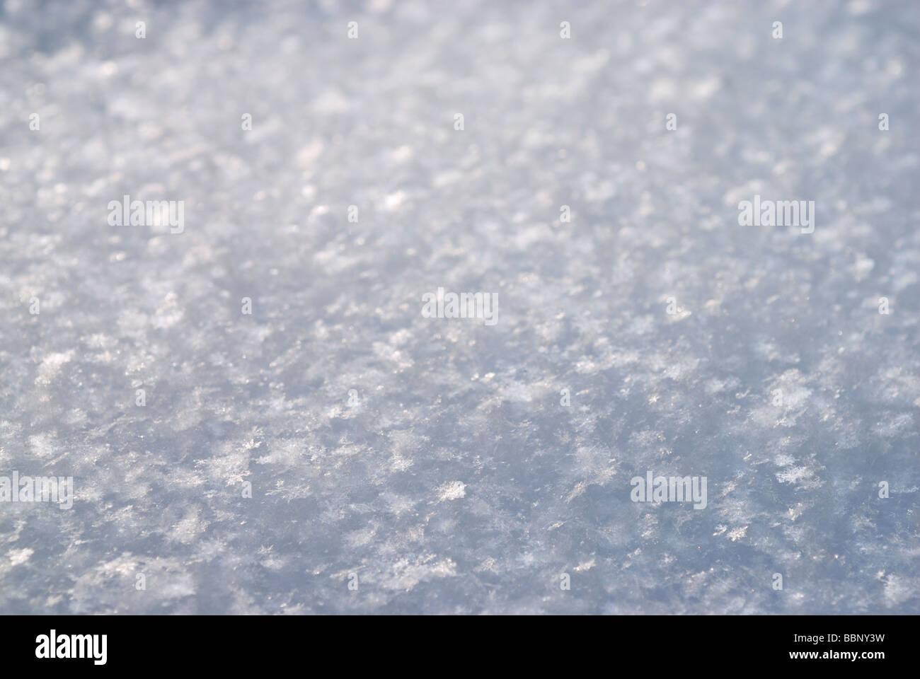 Snow background - Stock Image