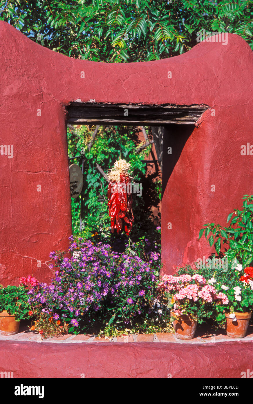 morning light on chili ristra and potted flowers old town