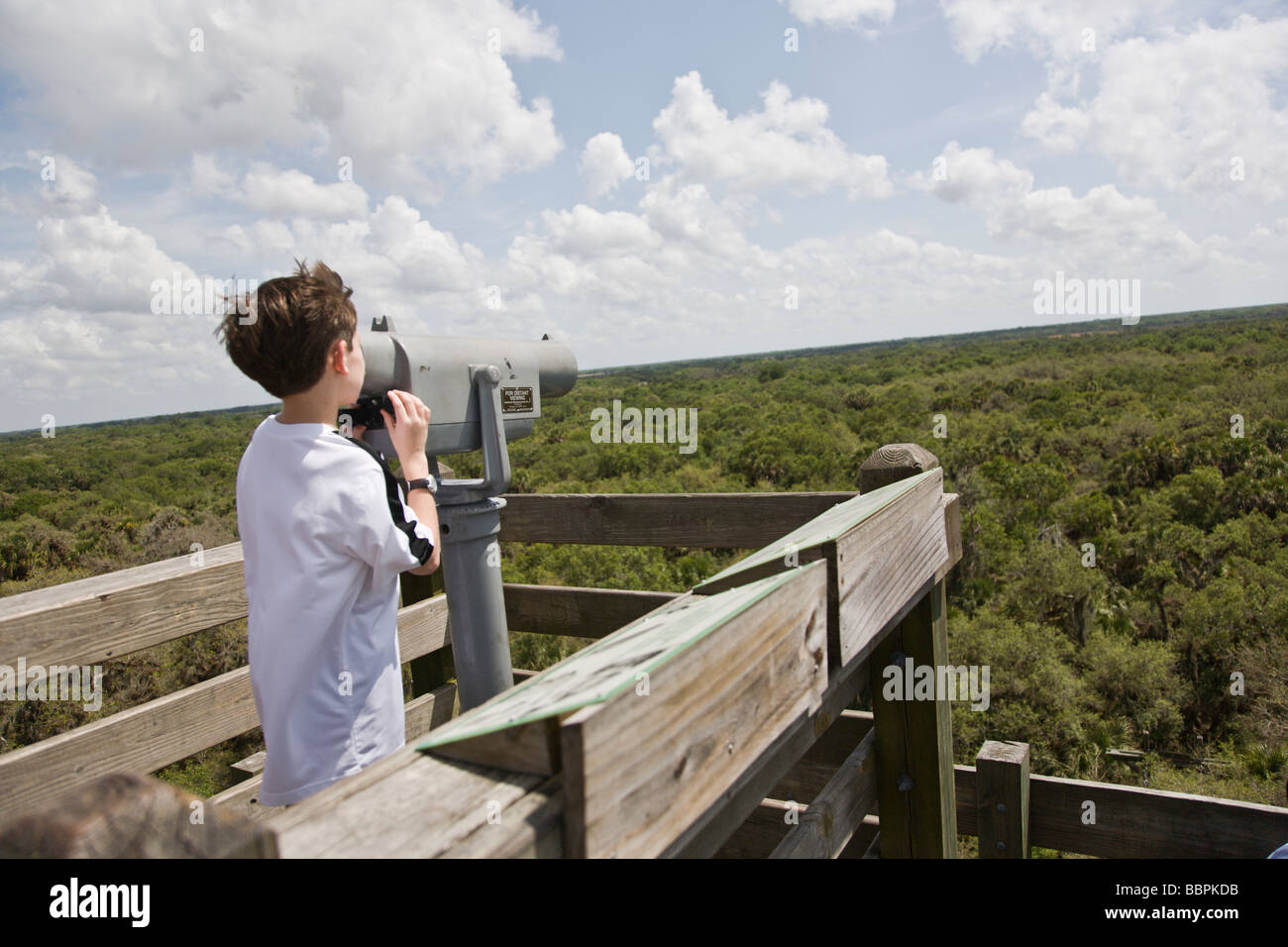 From the canopy tower at Myakka River State Park in Florida, a boy looks through the binoculars at the Florida landscape. Stock Photo
