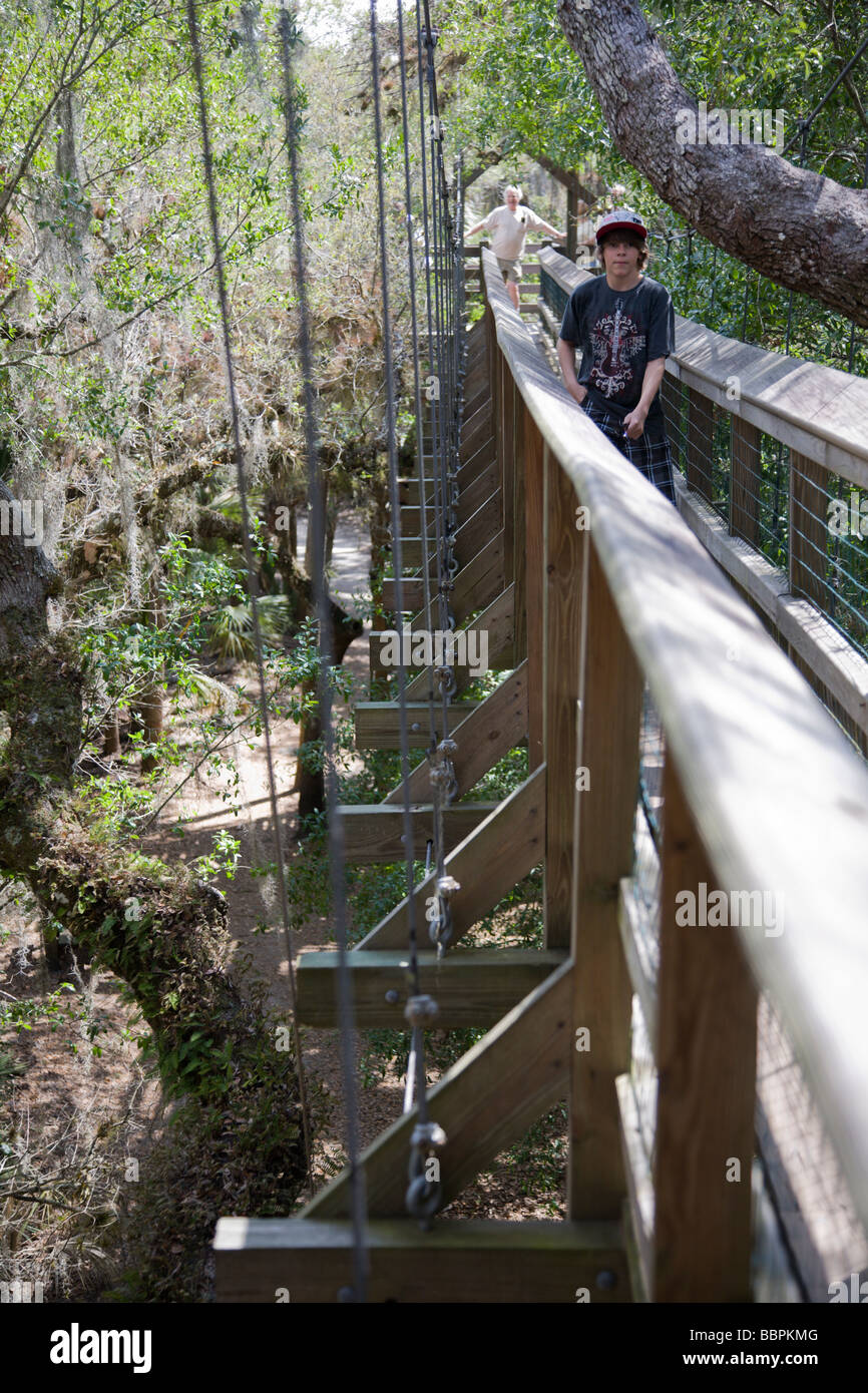 Tourists cross the canopy walkway leading to the canopy tower at Myakka River State Park in Florida. Stock Photo