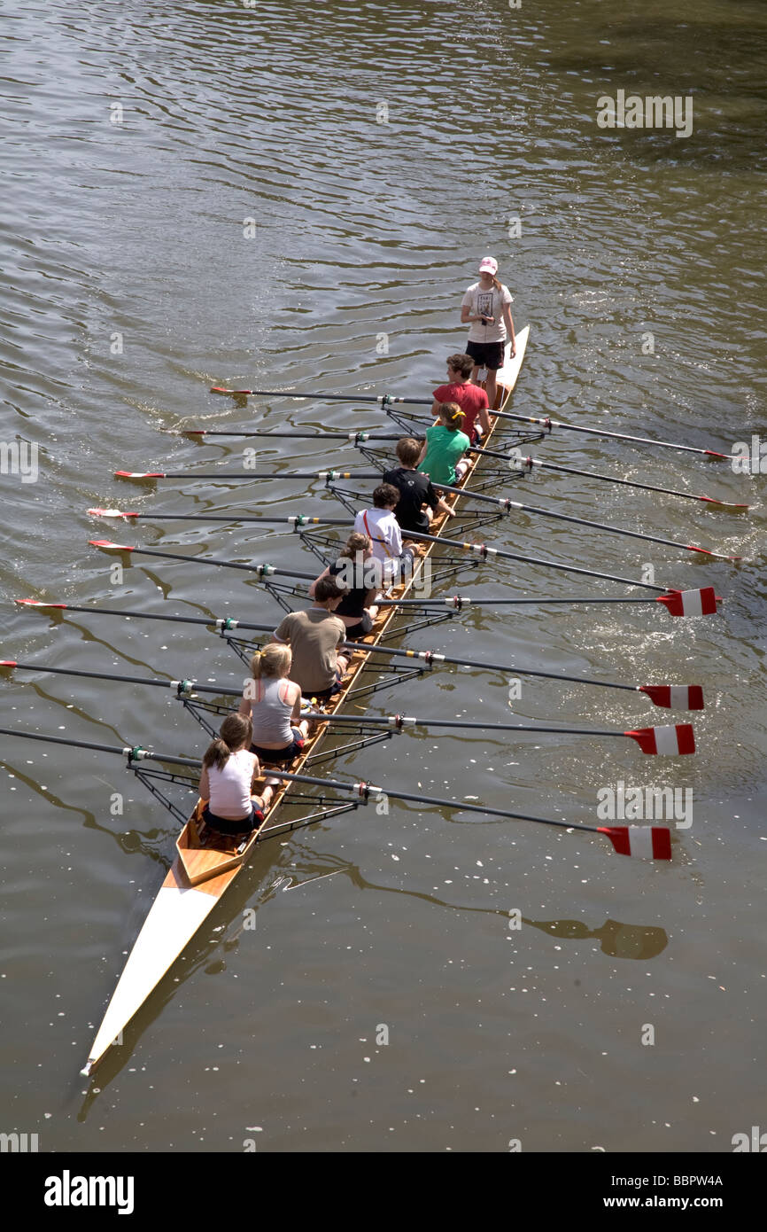 Rowers And Cox On Boat Adelaide Australia - Stock Image