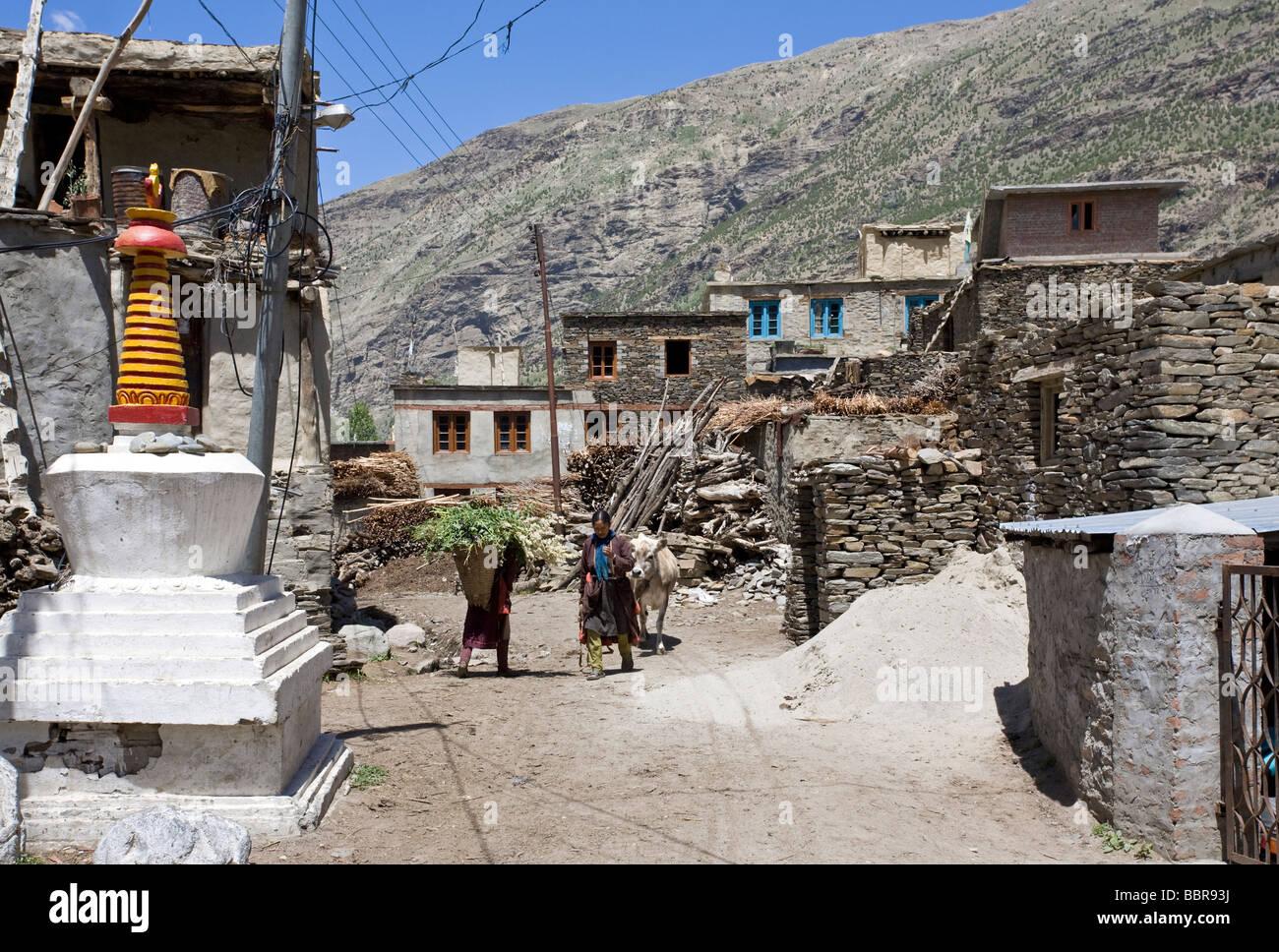Khardang village. Keylong. Himachal Pradesh. India - Stock Image