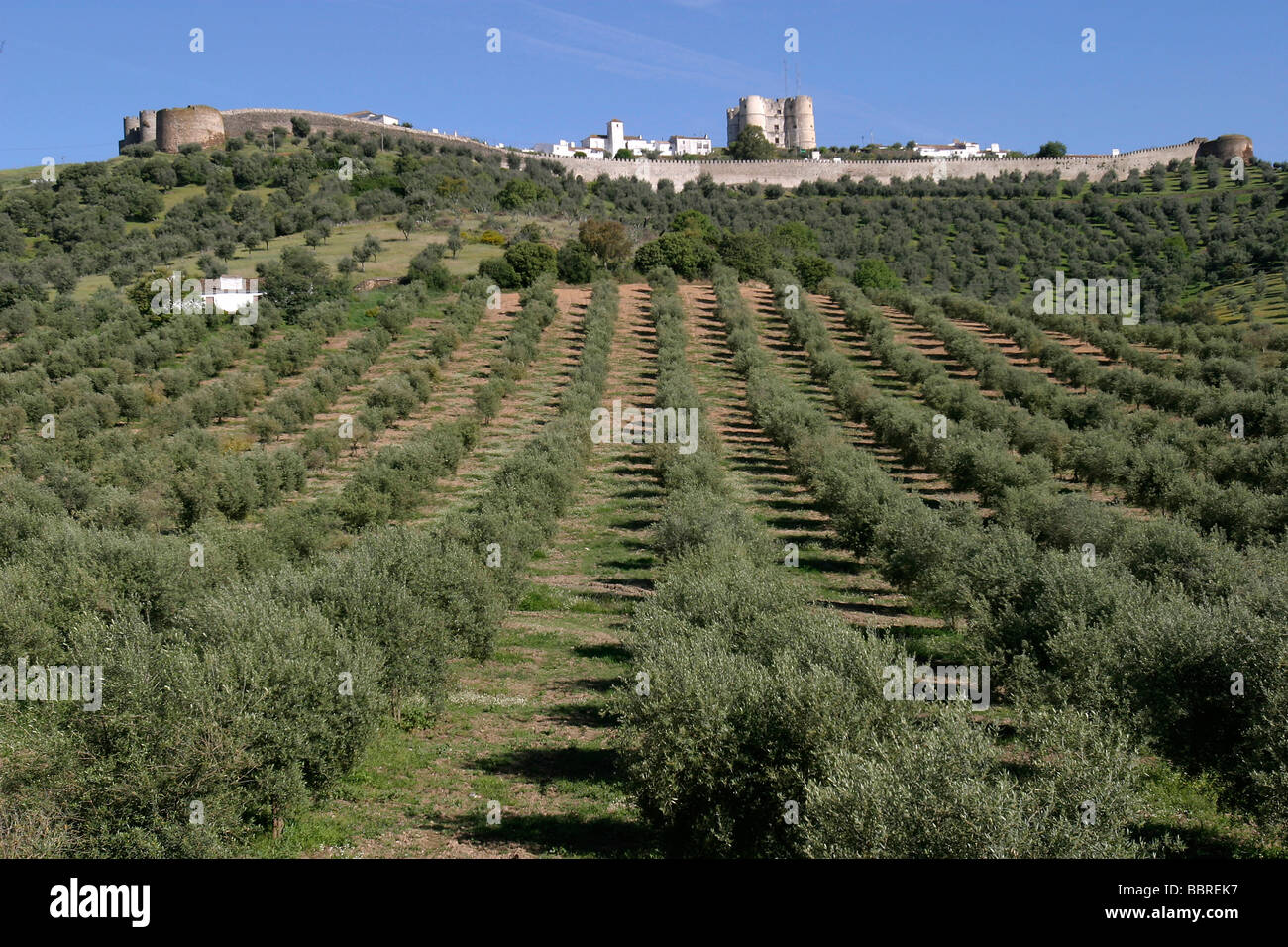 FORTIFIED TOWN OF EVORAMONTE AND VIEW OF THE NEIGHBORING LANDS, ALENTEJO, PORTUGAL - Stock Image