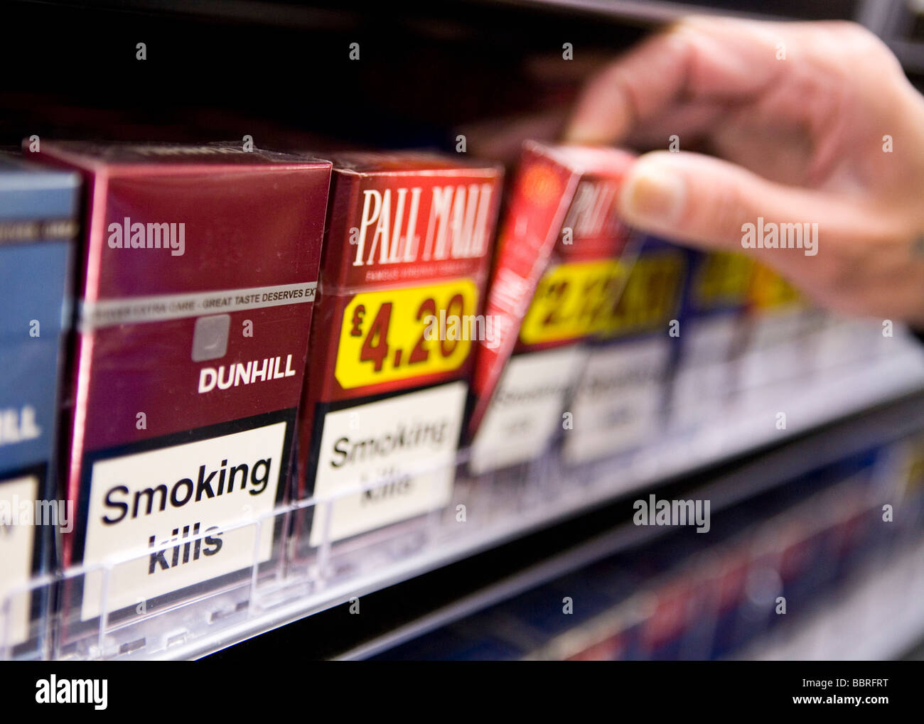 Buy premier cigarettes Salem tobacco