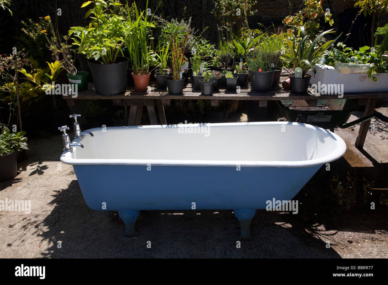White Cast Iron Bath Tub Sitting In The Middle Of A Garden Centre Stock Photo Alamy