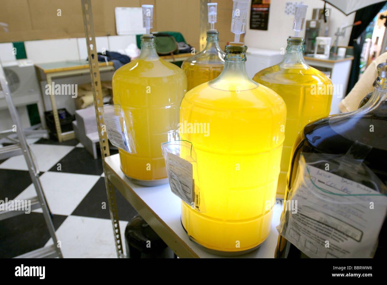 Brew it yourself beer vessels.  Home brewed beer - Stock Image