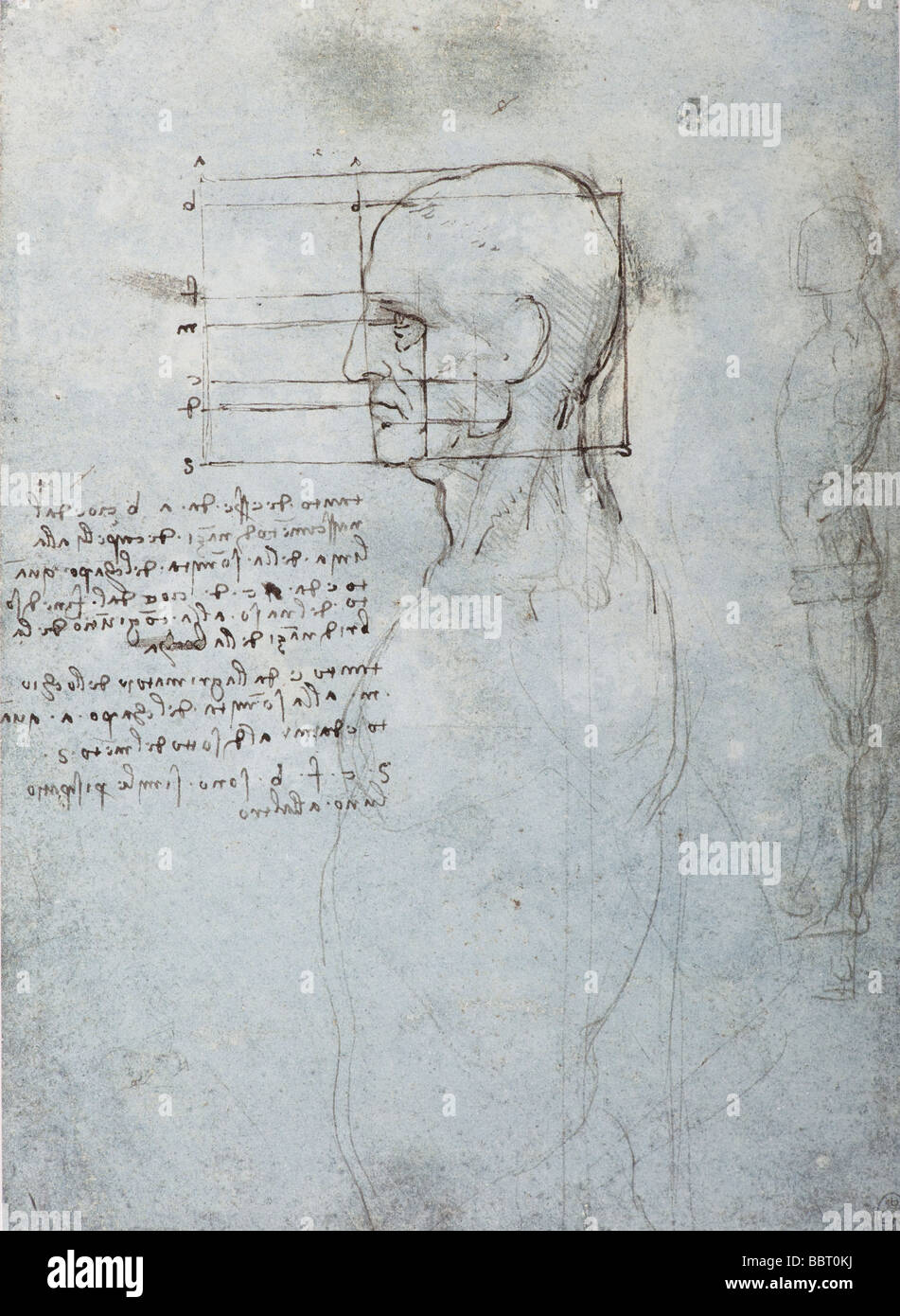 study of the proportions of the head and body by Leonardo da Vinci - Stock Image