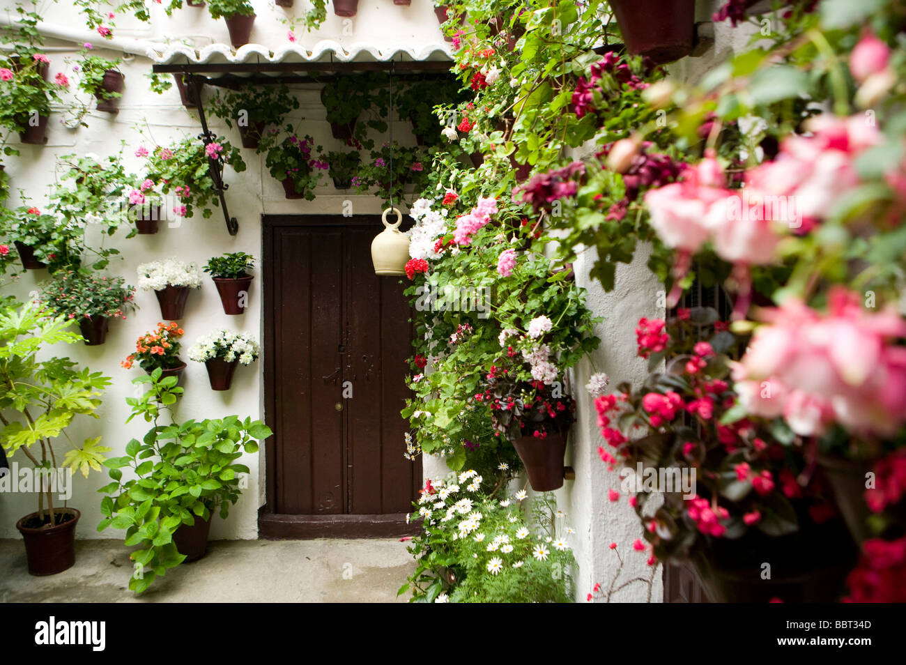 May, Patios, in, Cordoba, bougainvillea, Patio, contest, Andalucian, Patio, Andalusia, Spain, Mediterranean, flowers, - Stock Image