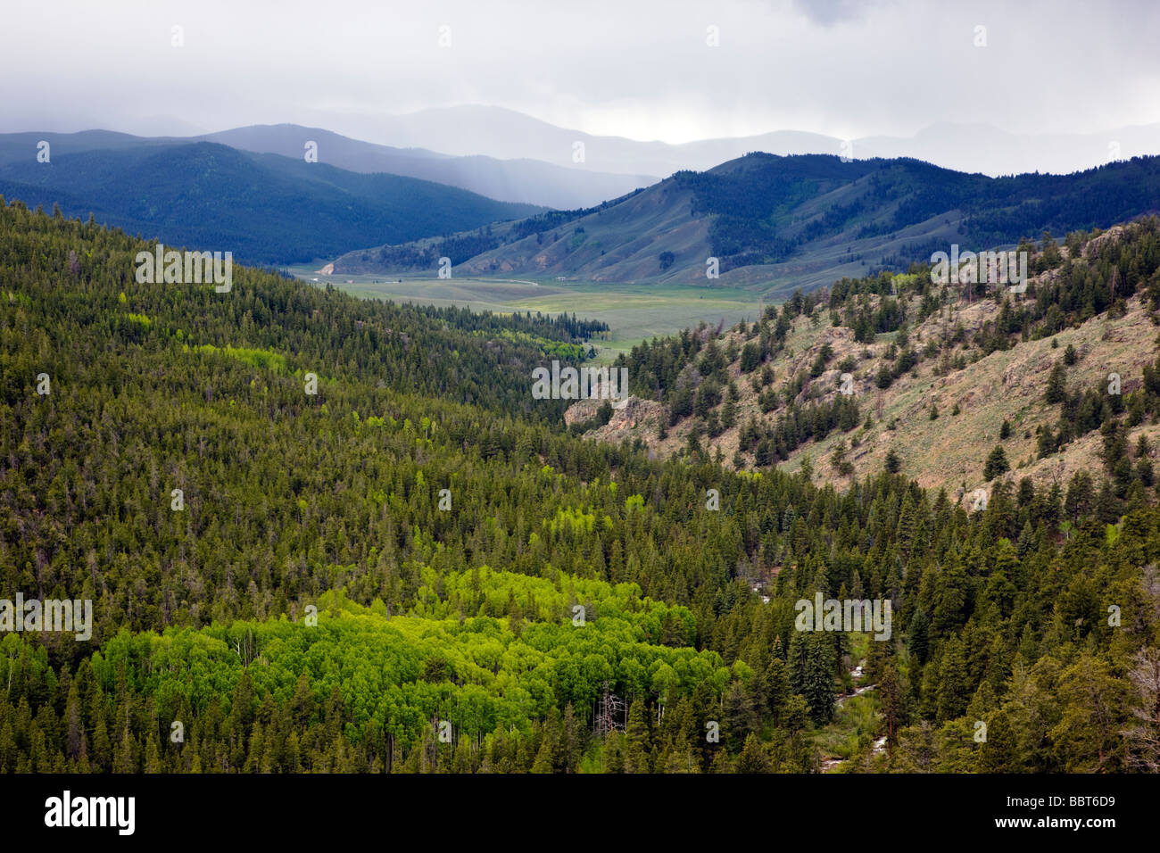 View west of the valley from near Monarch Pass Gunnison National Forest Colorado USA - Stock Image
