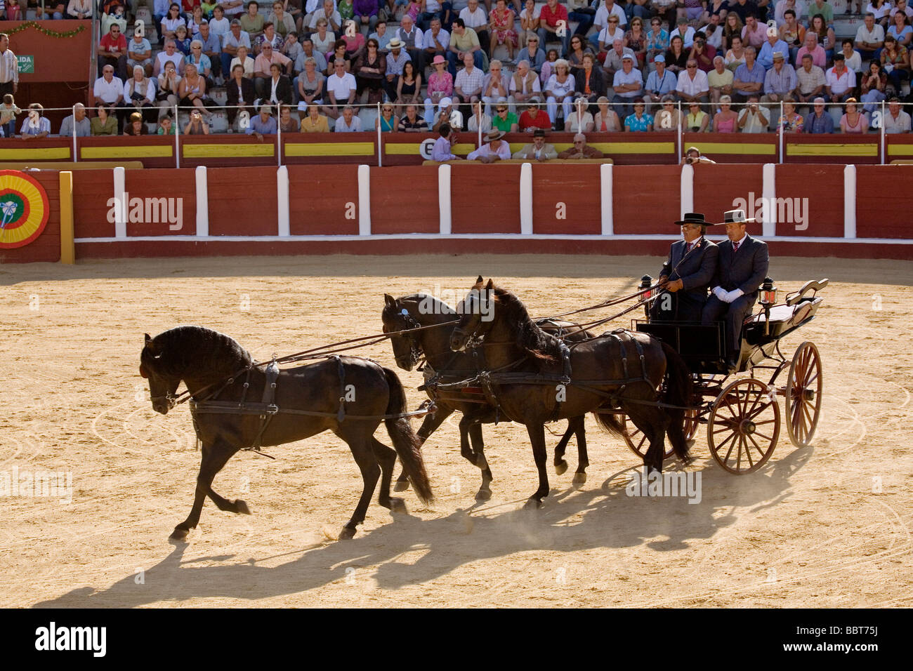 Concurso Nacional de Enganches Fair of Fuengirola Malaga Sun Coast Andalusia Spain - Stock Image