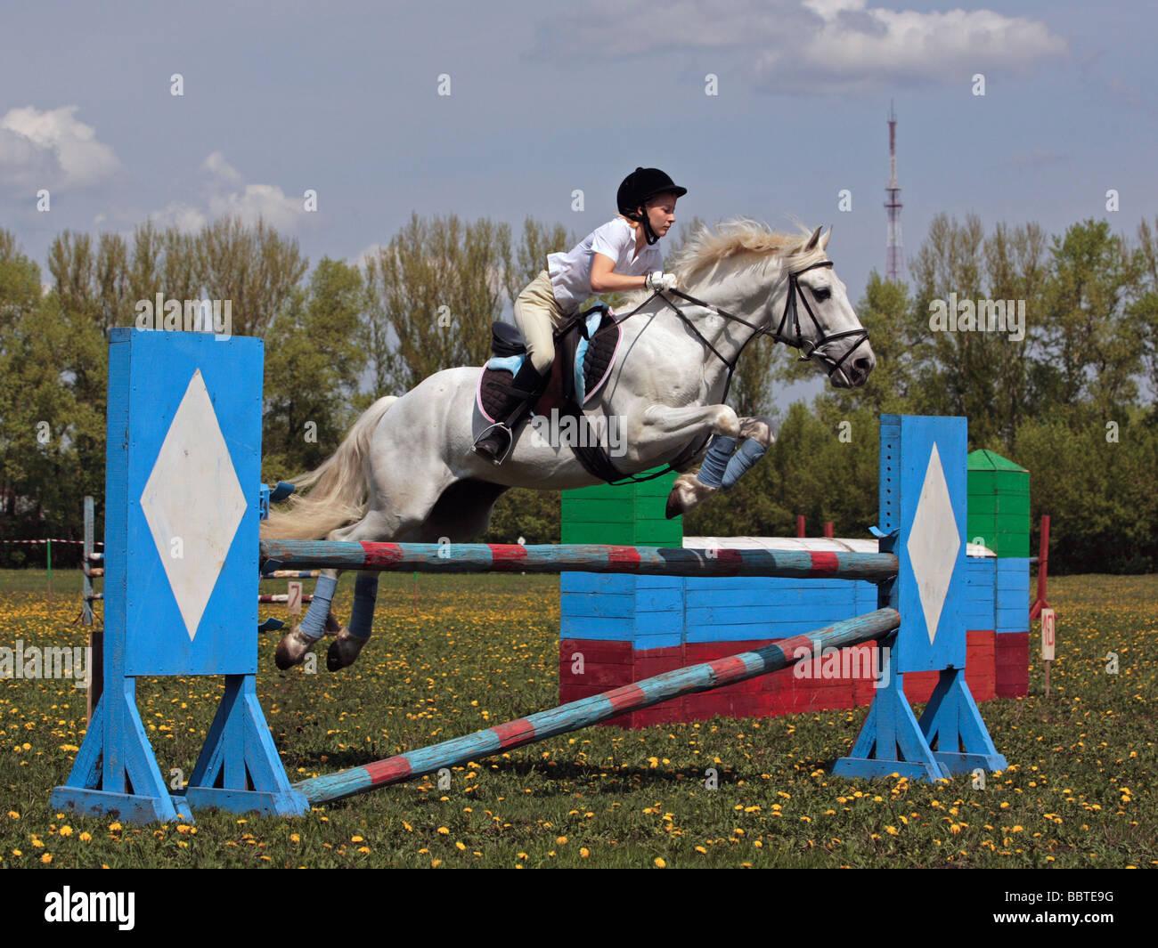 Equestrian sport - Stock Image
