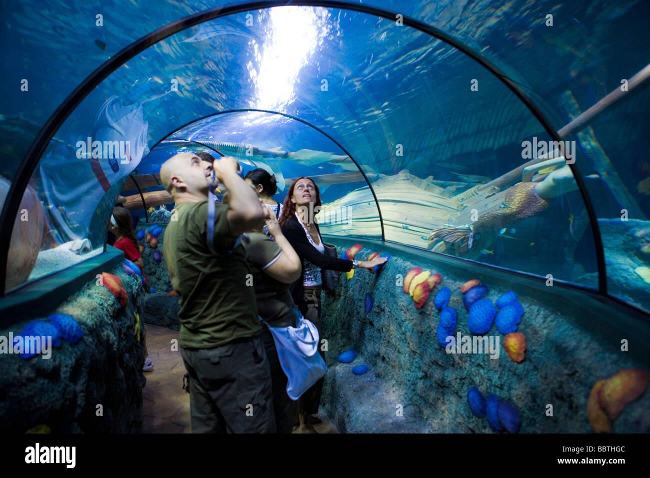 Gardaland Sea Life Aquarium, Castelnuovo del Garda, Veneto, Italy - Stock Image