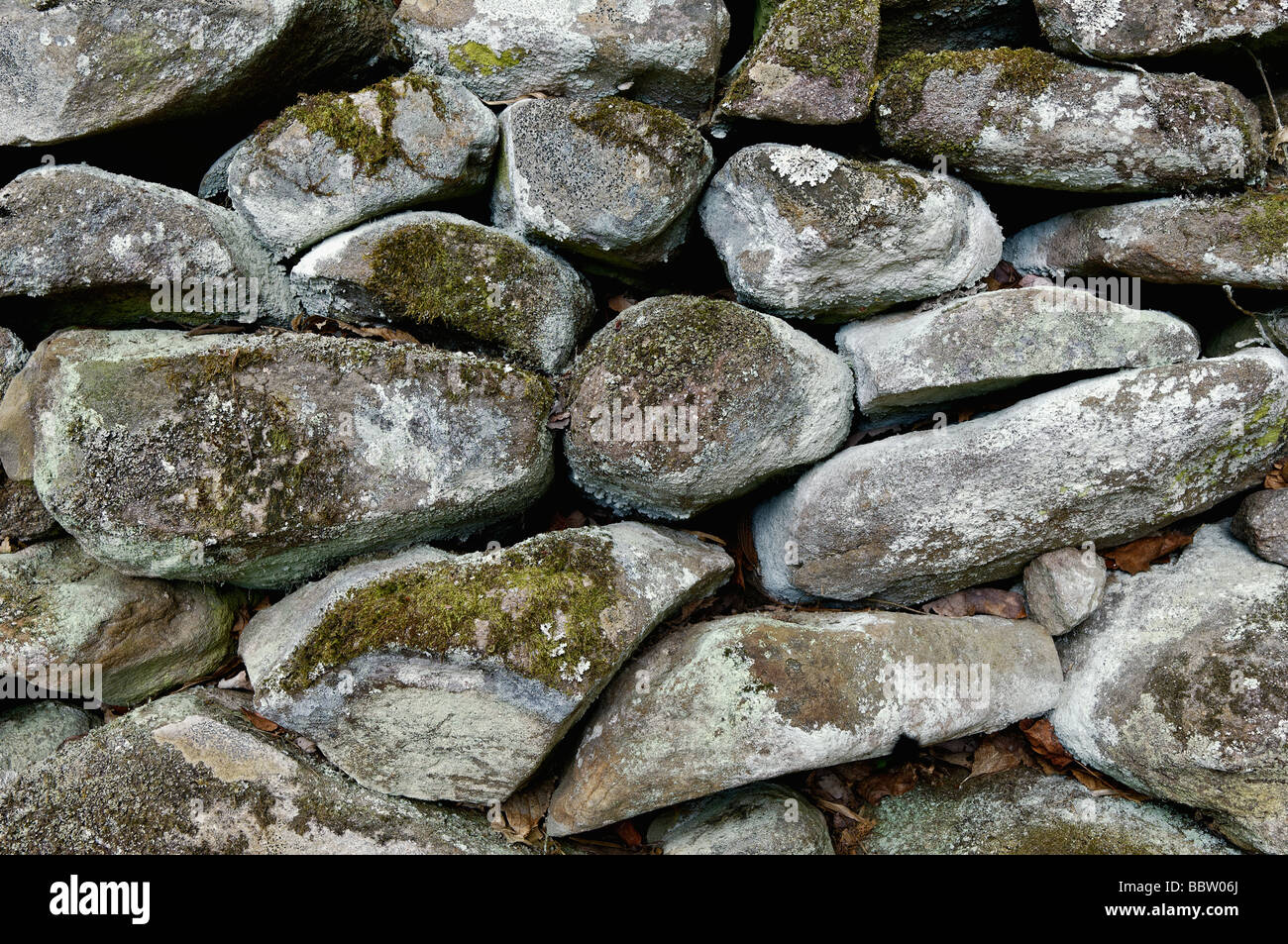 Detail of Moss and Lichen Covered Stone Wall in Great Smoky Mountains National Park Tennessee - Stock Image