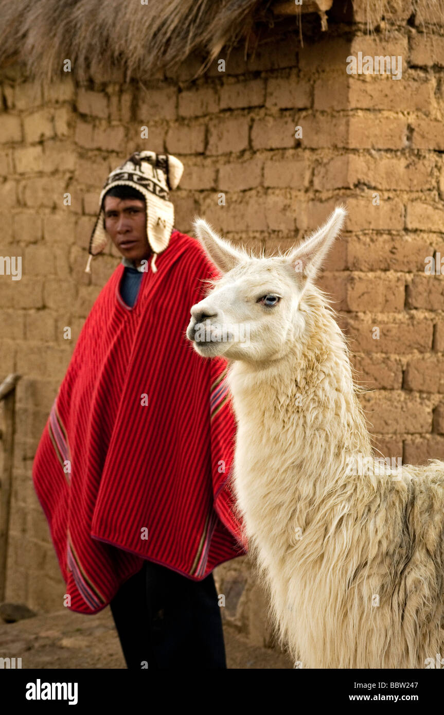 Llama and Aymara  colorful touristic destination typical dress Andean indigenous adobe - Stock Image