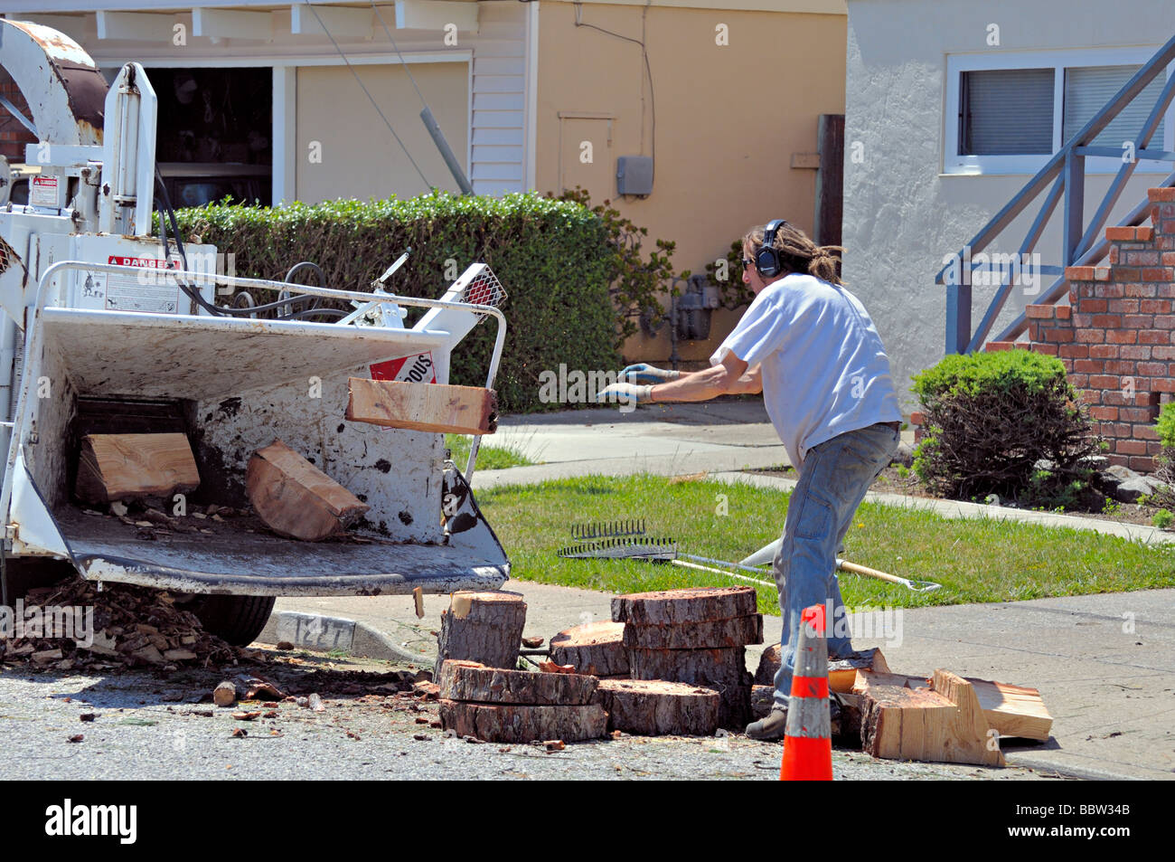 worker tosses wood into a chipper in an unsafe and unprotected way - Stock Image