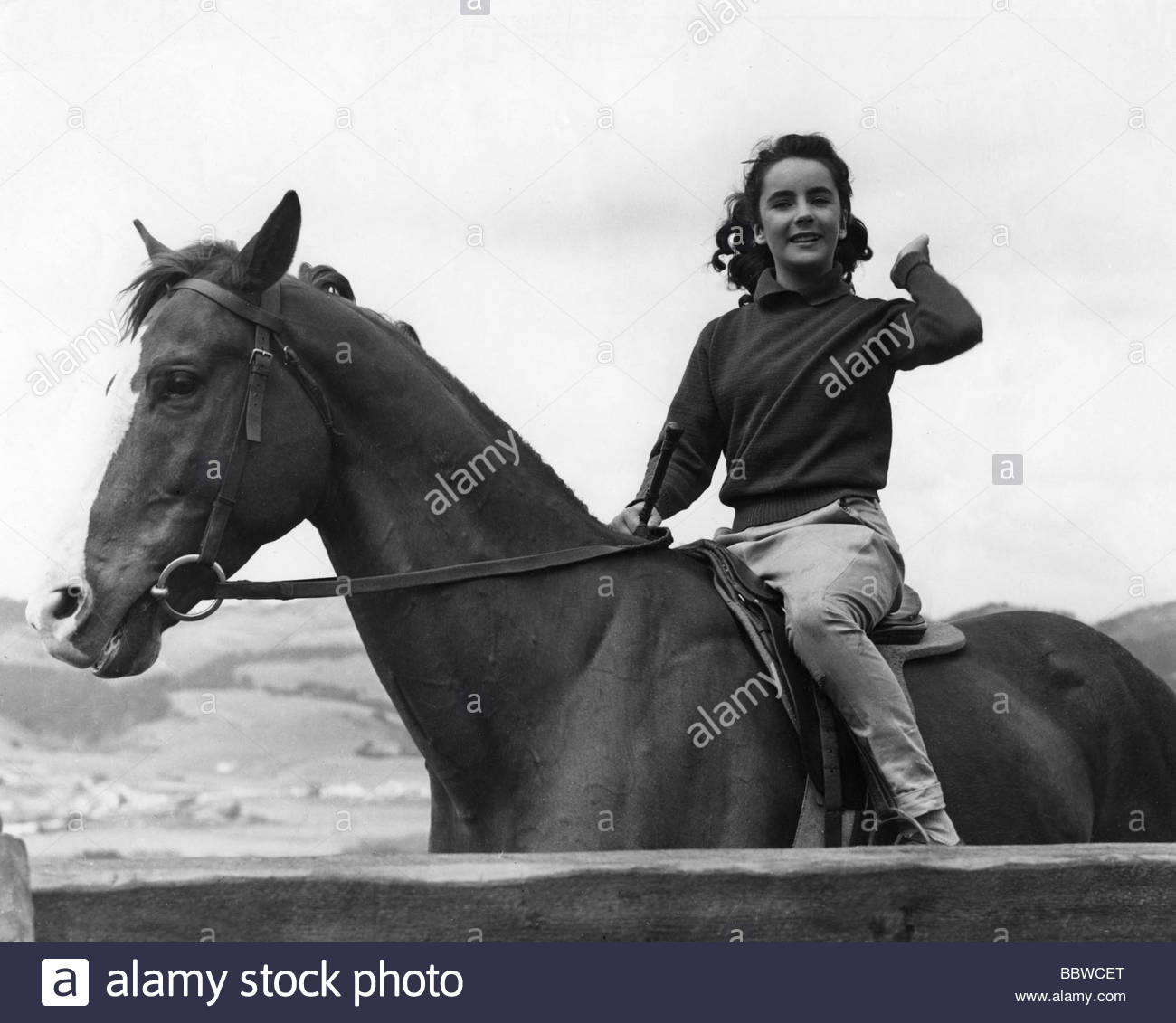 Taylor, Elizabeth (Liz), * 27.2.1932, American actress, half length, riding on horse, 1944, 1940s, 40s, girl, young, - Stock Image