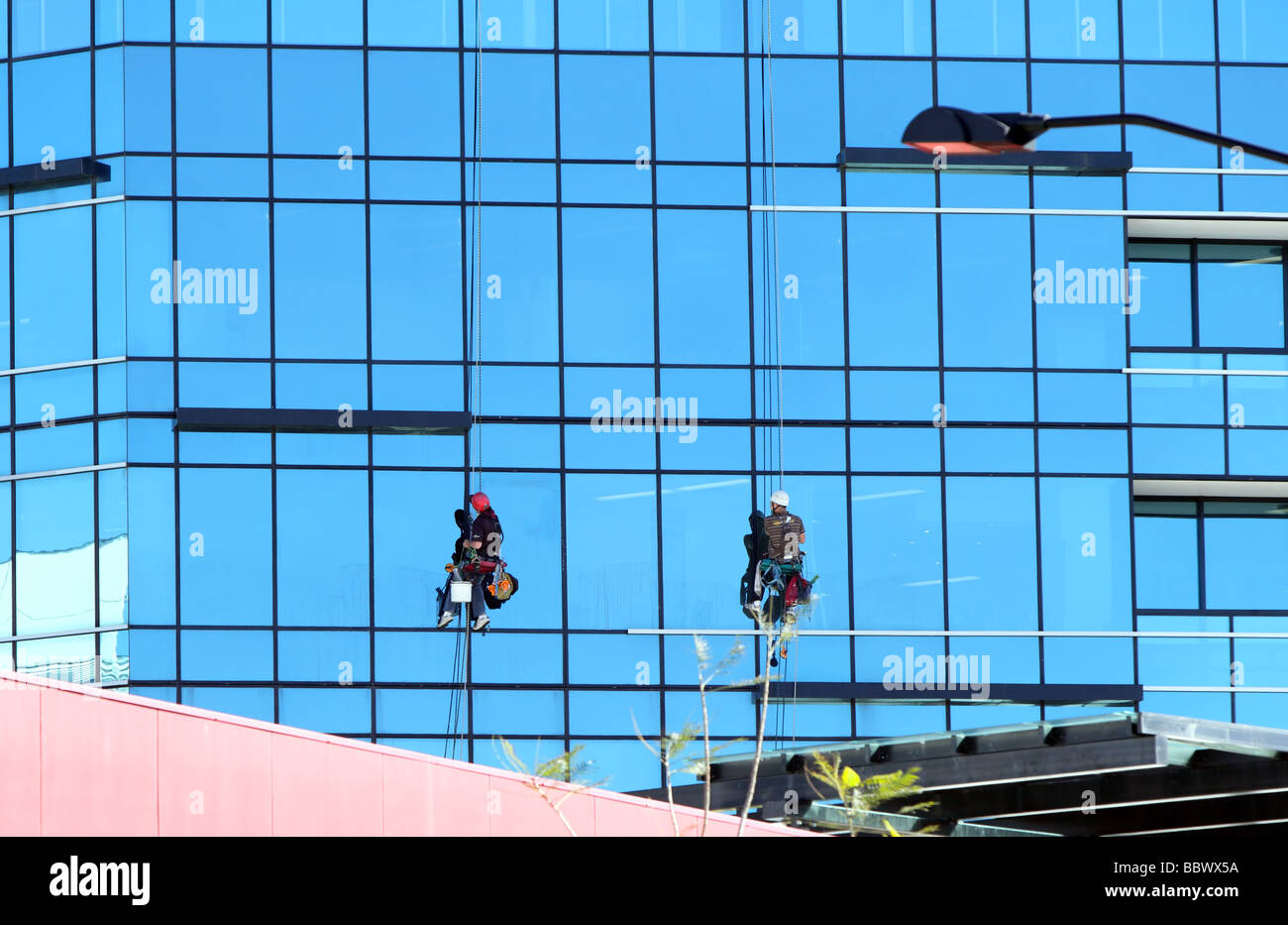 Two abseiling window cleaners washing windows on a skyscraper hanging by ropes with buckets attached Stock Photo