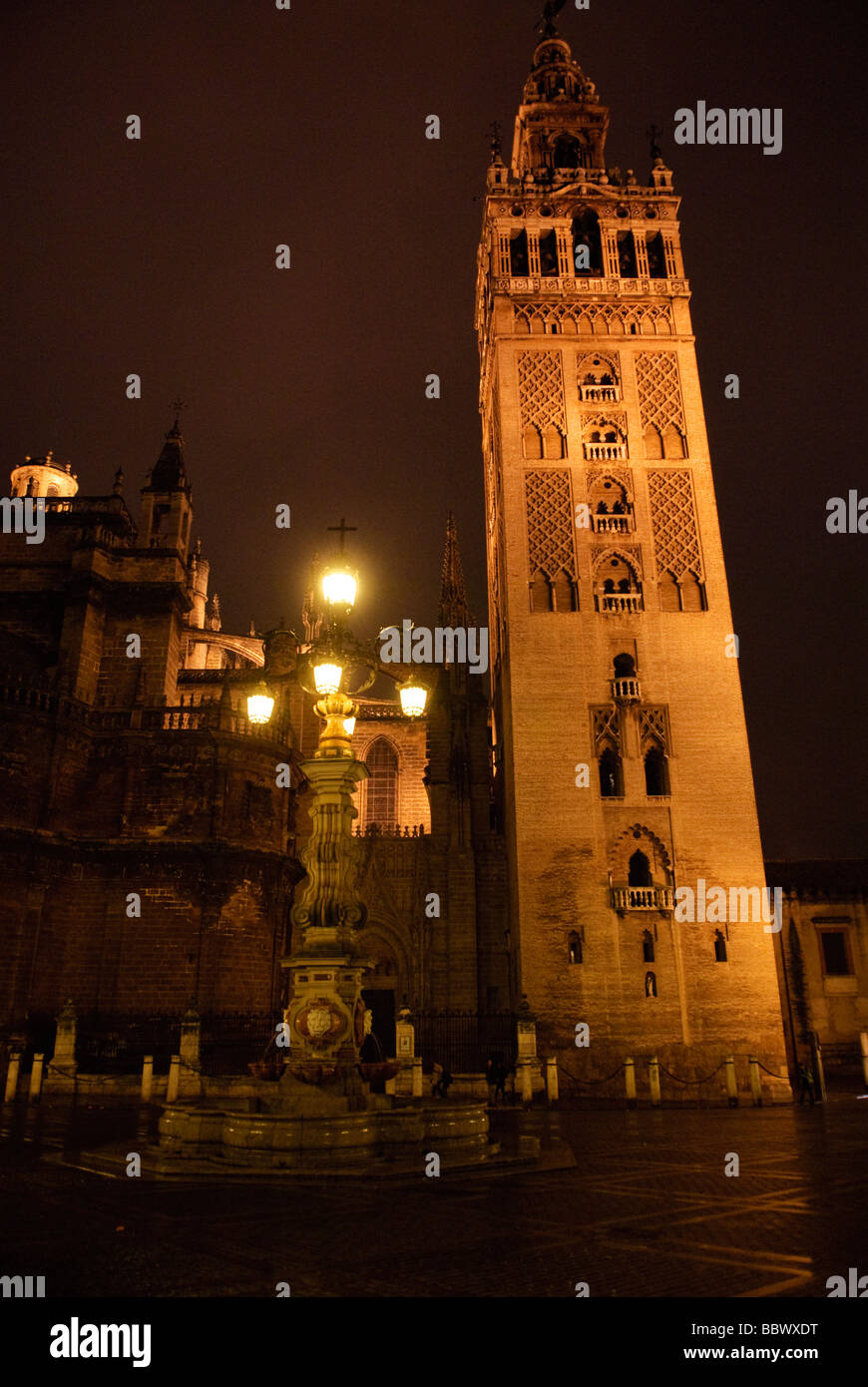 illuminated tower of La Giralda Cathedral at night in Sevilla Andalucia Spain - Stock Image