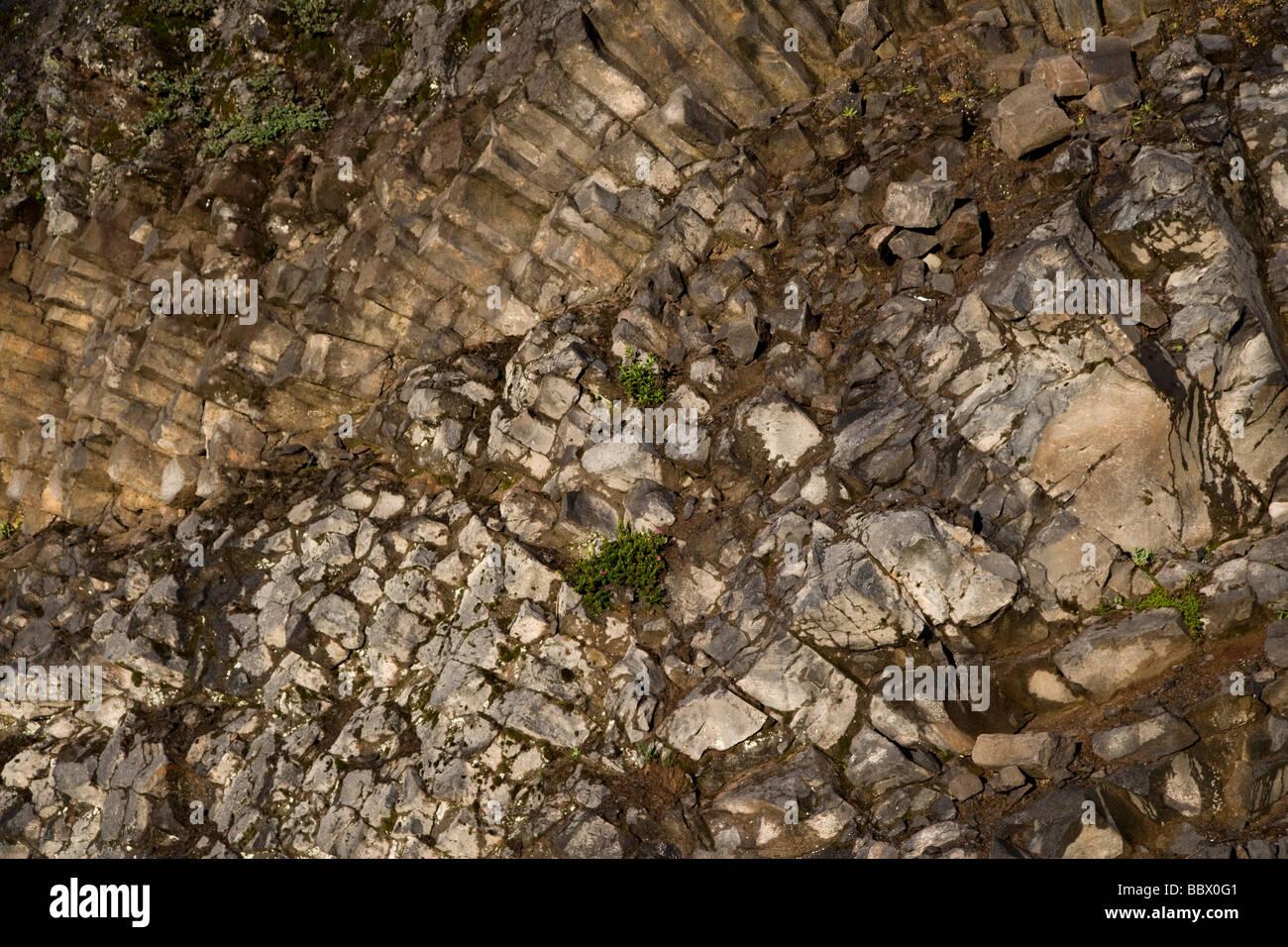 Columnar Basalt , Mt Baker, Mt Baker-Snoqualmie National Forest - Stock Image