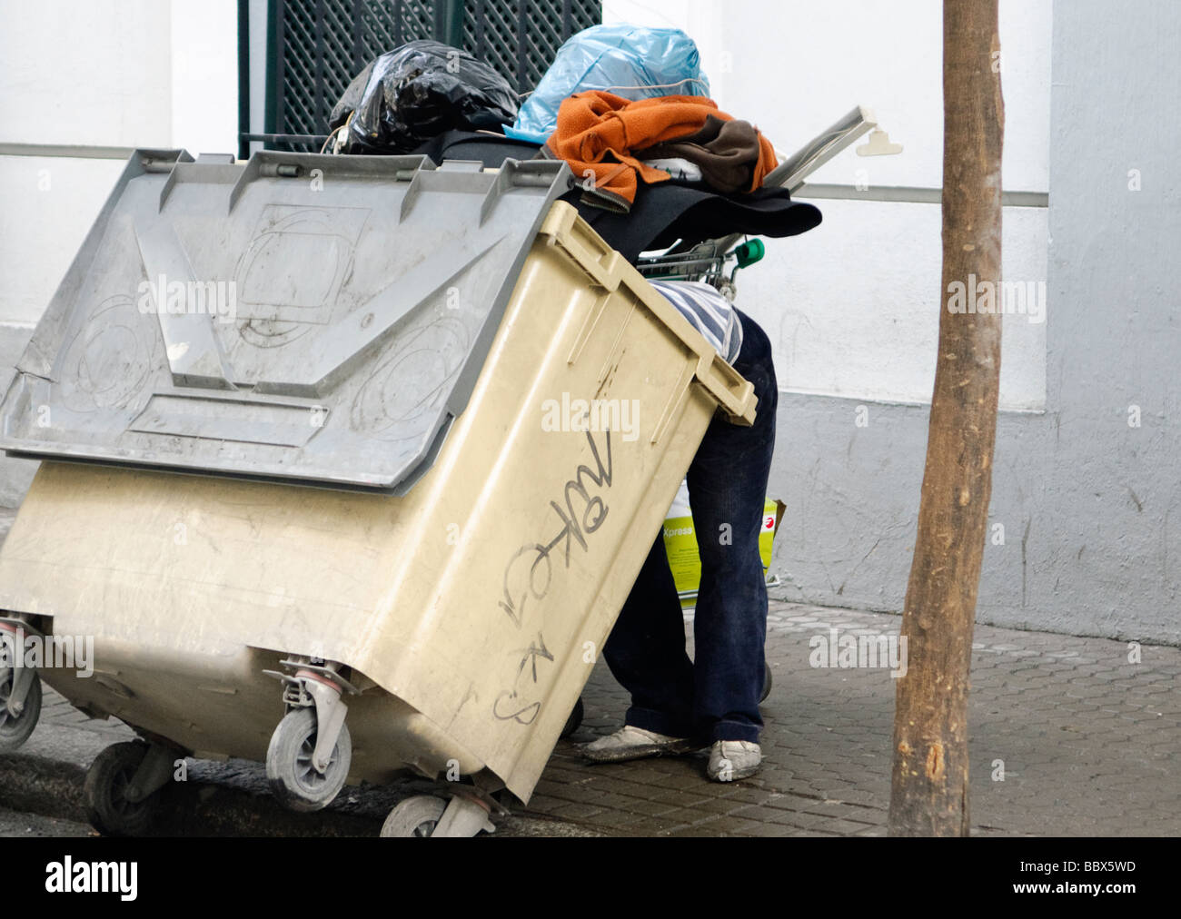 man dives into  garbage container in search for food in street in Sevilla, Andalucia, Spain - Stock Image