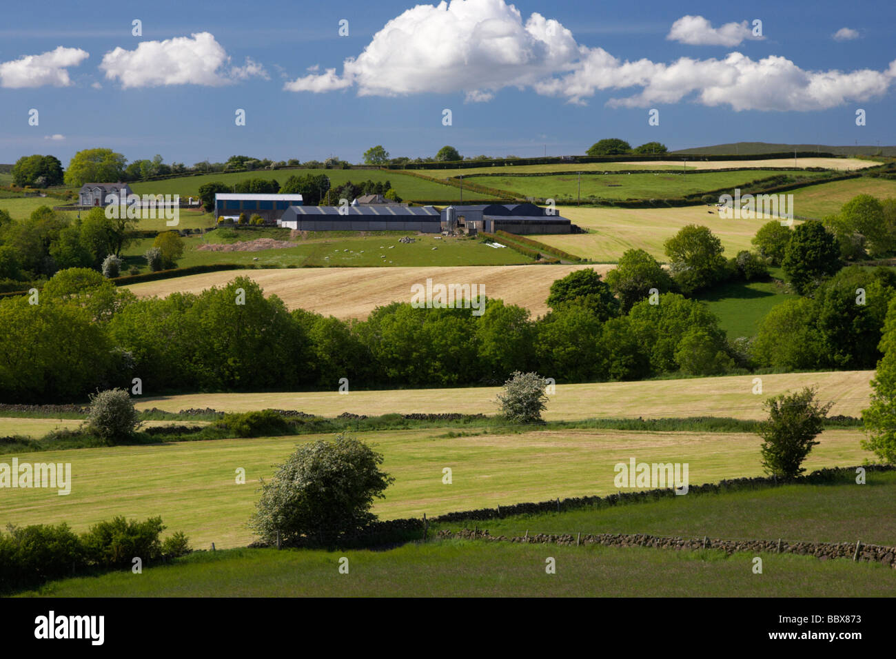farm buildings on hilly farmland in county antrim northern ireland uk - Stock Image