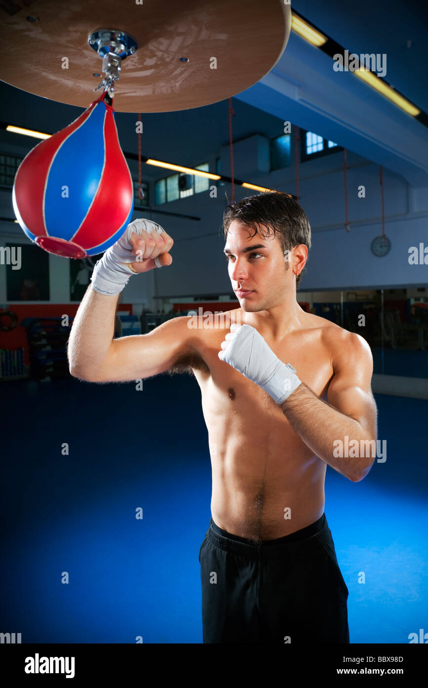 young adult man hitting speed bag in gym Copy space - Stock Image