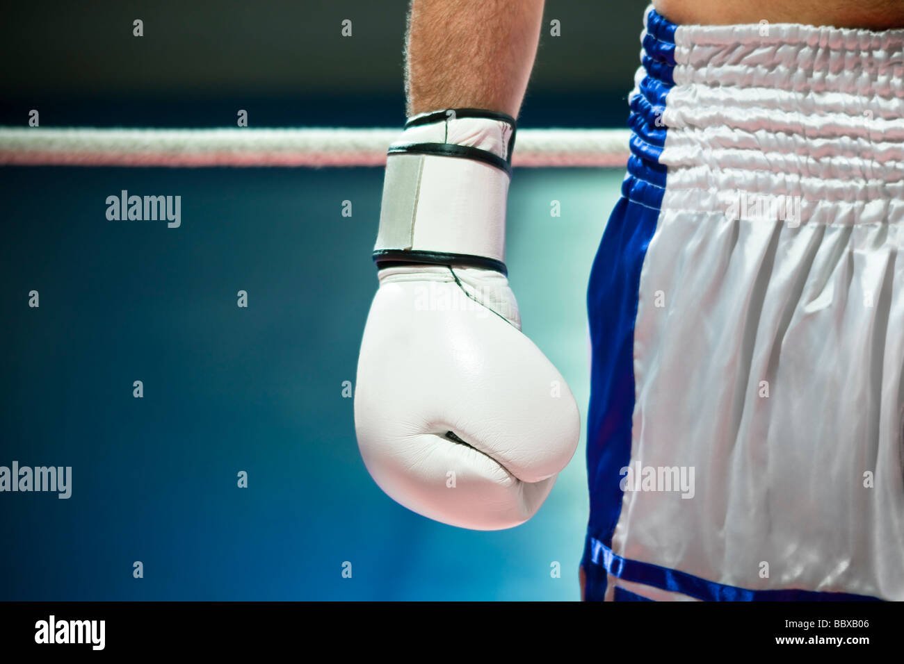 cropped view of man with boxing gloves Copy space - Stock Image