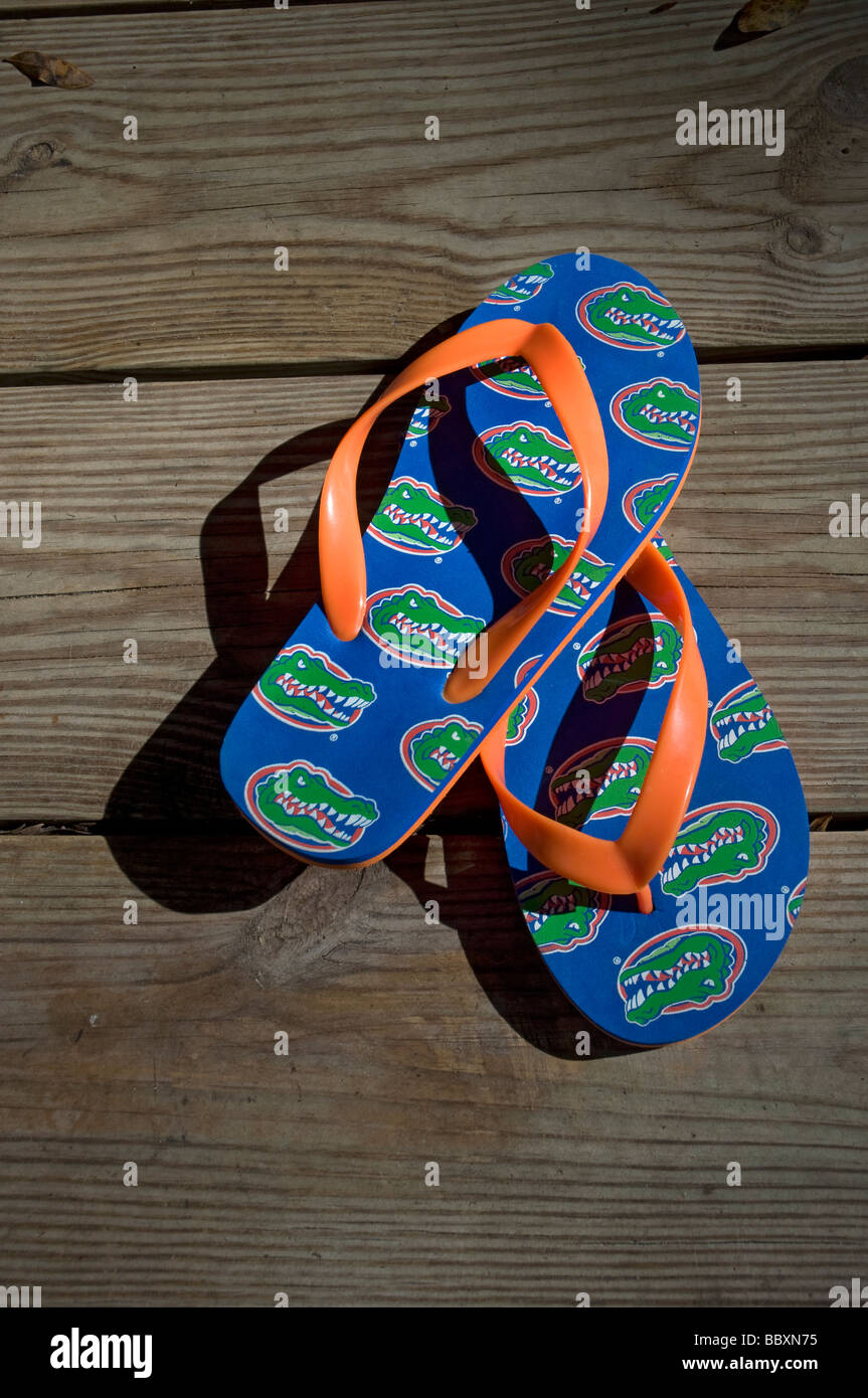 pair of novelty flip flops with University of Florida Gator insignias - Stock Image