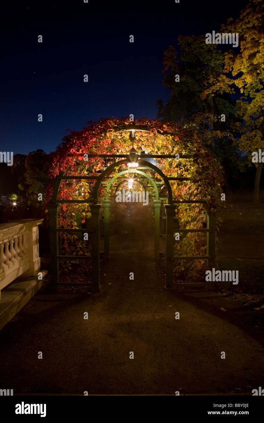 Illuminated garden in the late summer night in Tallinn Kadriorg park Estonia - Stock Image