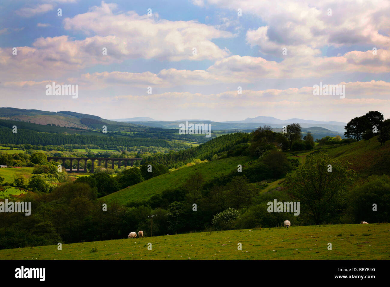 Rural view towards Cynghordy Viaduct on the Heart of Wales Line near the small town of Llandovery - Stock Image