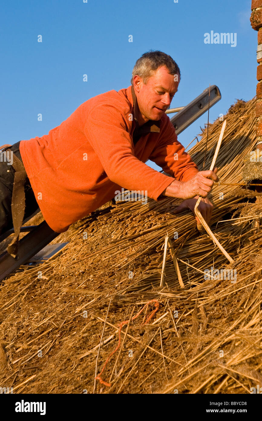 A thatcher at work in Dorset, England. - Stock Image