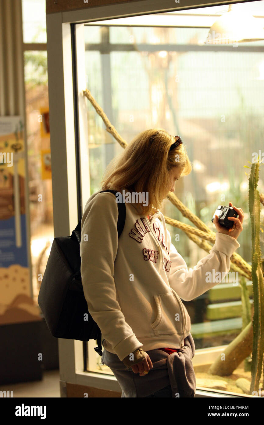 Girl with injured right arm photographing exhibit - Stock Image