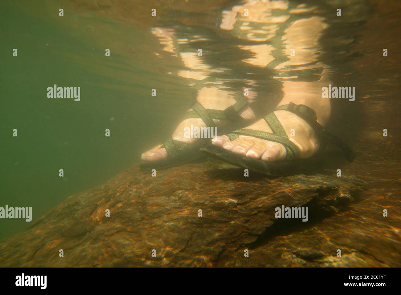 Underwater view of a man's feet in sandals. - Stock Image