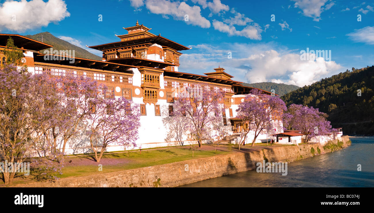 Majestic Punakha Dzong - Punakha, Bhutan - Stock Image