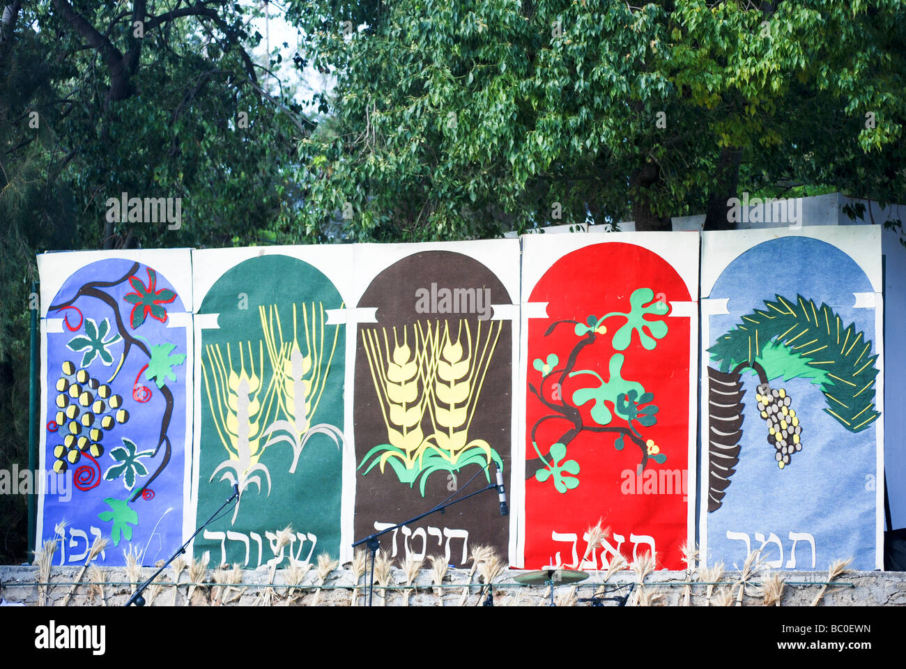 Shavuot celebration End of Harvest season at the Mikveh Israel school The Seven Species - Stock Image
